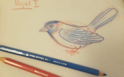 Zeichnen Lernen vom Profi – Teil 2