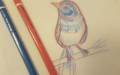 Zeichnen Lernen vom Profi – Teil 4